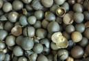 油用牡丹种籽
