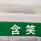 江苏直销含笑种子种子批发