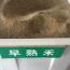 早熟禾凈籽種子供應