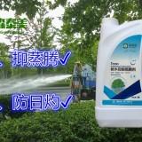 抑蒸劑樹木移栽蒸騰劑蒸騰抑制劑