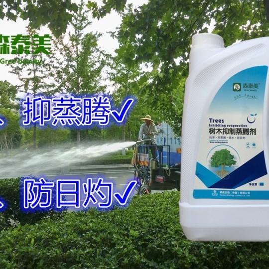 抑蒸剂树木移栽蒸腾剂蒸腾抑制剂
