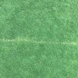 江苏马尼拉草坪多少钱 马尼拉草坪价格