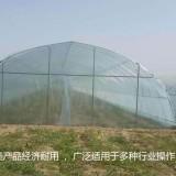 温室大棚出售价格 温室大棚多少钱