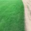 高羊茅草坪一平方价格多少钱 江苏高羊茅草坪基地供应